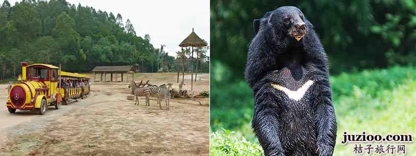 长隆香江野生动物园_长隆香江野生动物园门票